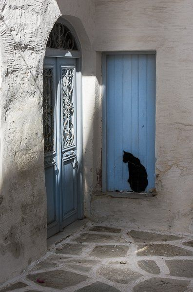 ...the black cat ....bansky was here?