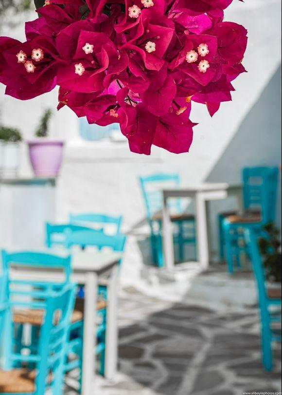 Taverna Flowers....Happy Valentine's Day Everyone X