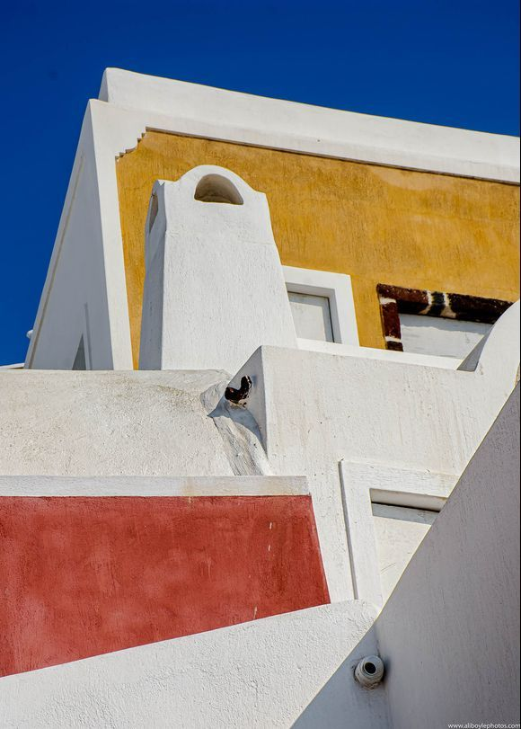 ...forms and colours...