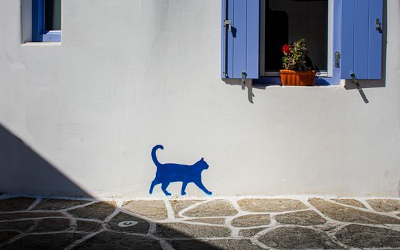 ...you don't often see that much graffiti out here on my special island...but when I do see it, it is sometimes lovely and a piece of art in itself....makes me smile..🙂 ...banksy would be proud.... ...prodromos village, paros island