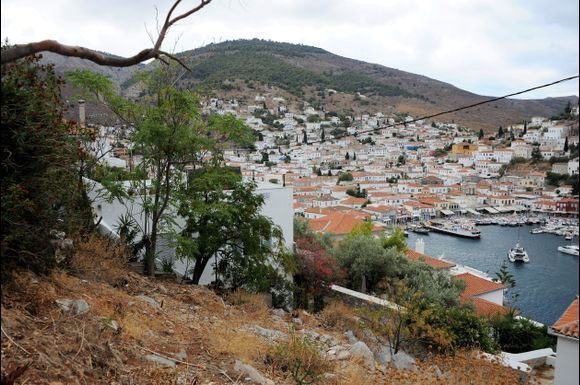 View of the harbor from the hill on the east side of the harbor area