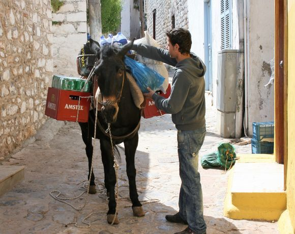 The donkeys take lighter goods and rubbish