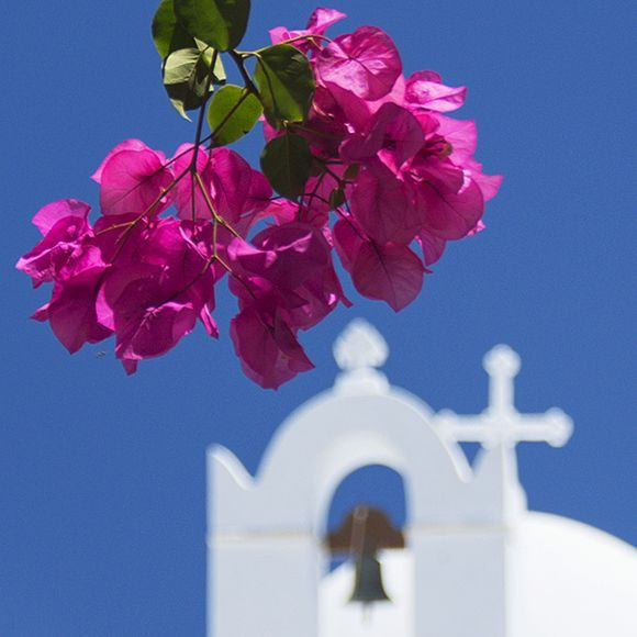 Bougainvillea and bell tower - Chora