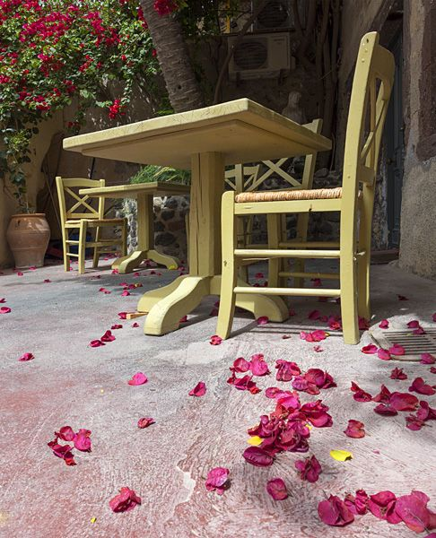 Table and chair with fallen blossoms.
