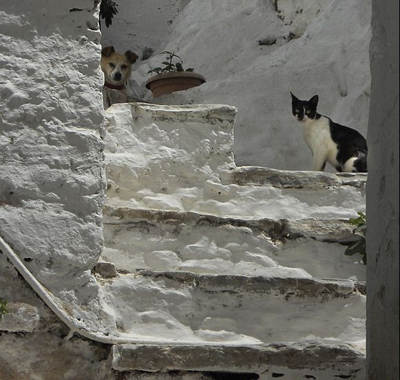 Sentries at the top of the stairs - Filoti
