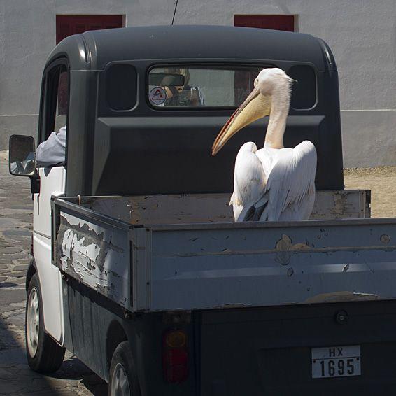 Petros takes a taxi to work.