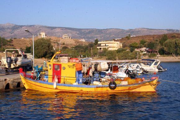 Limnia Yellow Boat