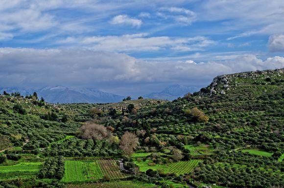 On the road to Arkalochori, beneath the lost Minoan Palace of Galatas. #Minoans
