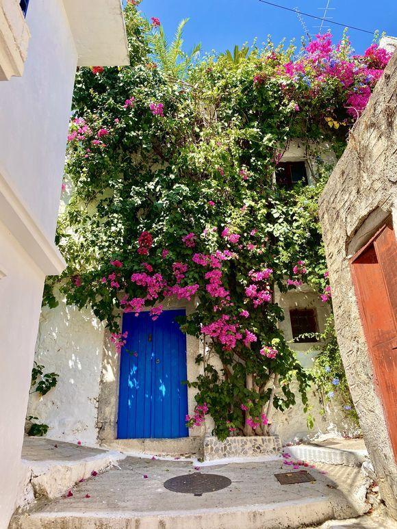 Dresses in flowers 📍Kritsa, Ágios Nikolaos. 08.2020 Hope you like it 📸 #GreekaPhotoConstest