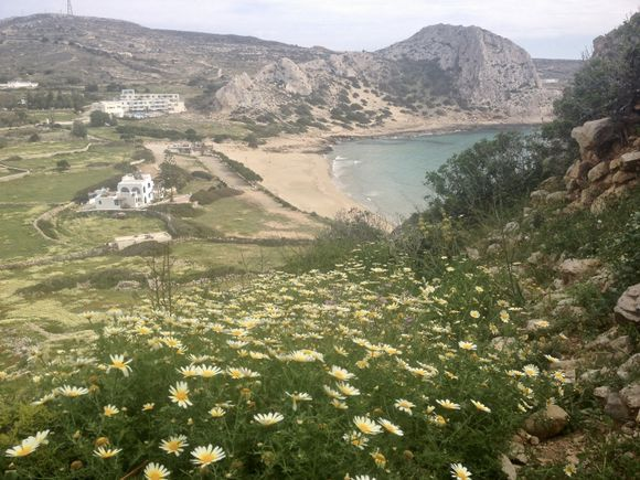 The eternal beauty of spring, photo taken from on top of the Paleokastro, looking down to the pristine beach of Agios Nikolaos.