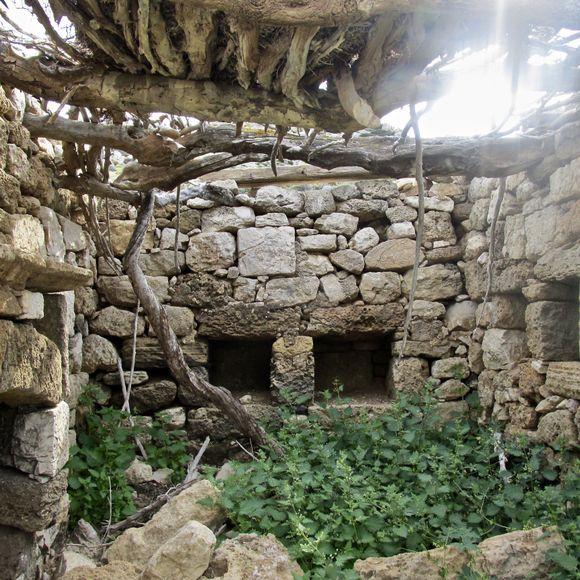 Mycenaean ruins on the Paleokastro.