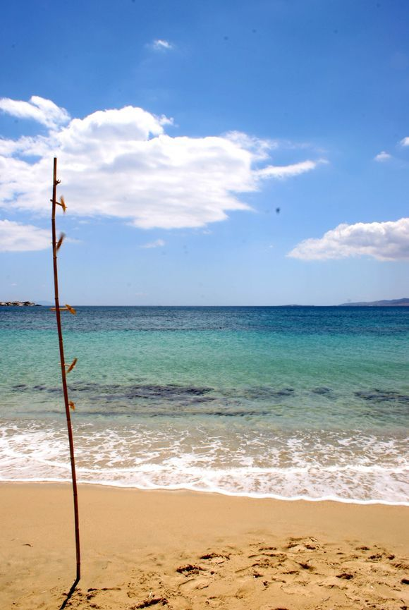Naxos, the long sandy beach of Plaka.