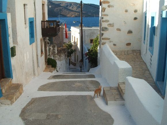 Agia Marina\'s street