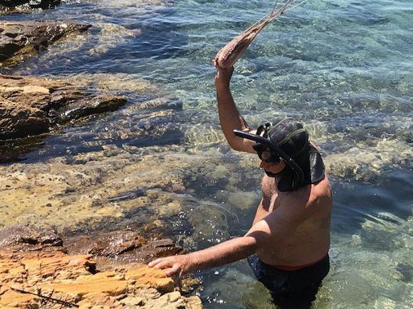 Fresh Catch of the day at Klima near Posidonio.