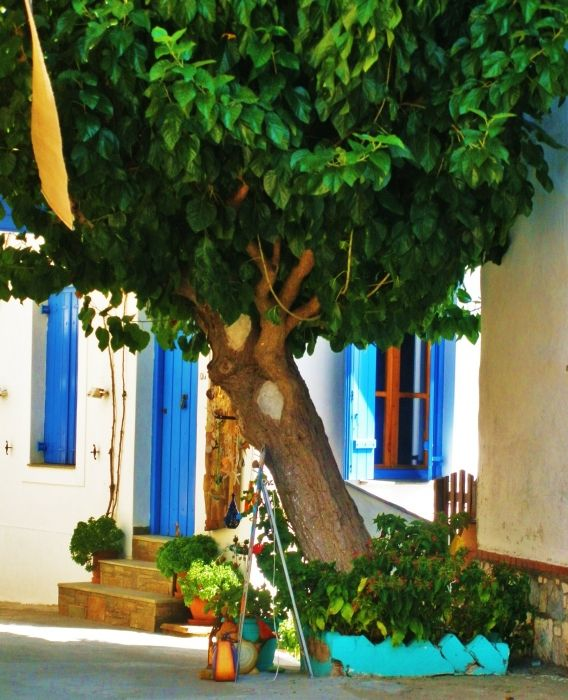 Alonissos - Old Town