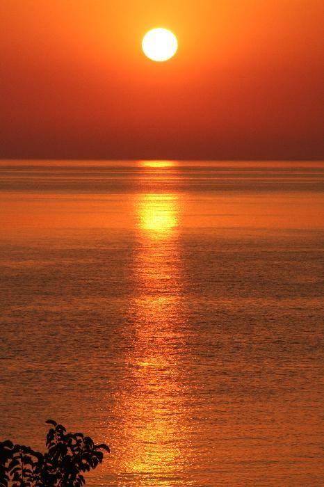 stegna sun