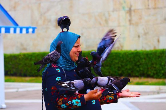 Pigeons of Athens'  Syntagma Square