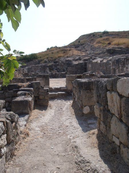 Ancient Kamiros, August 2010