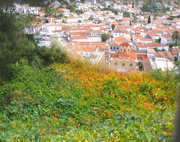 View of Hydra from top of the hill.