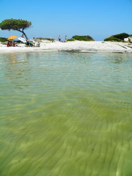 Karidi beach Vourvoyroy- Chalkidiki