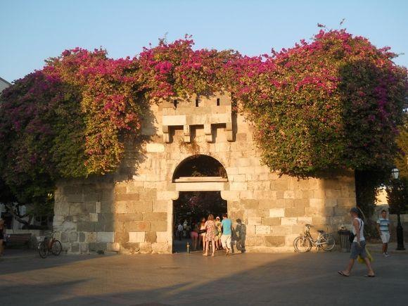The door to Paradise