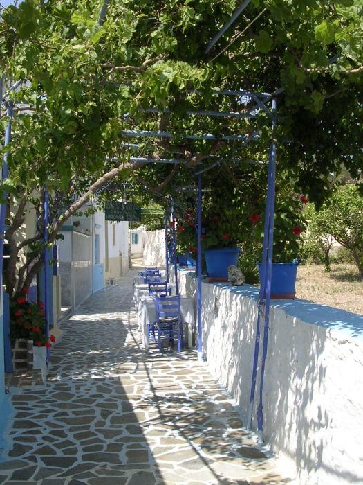 Little street in Telendos harbour