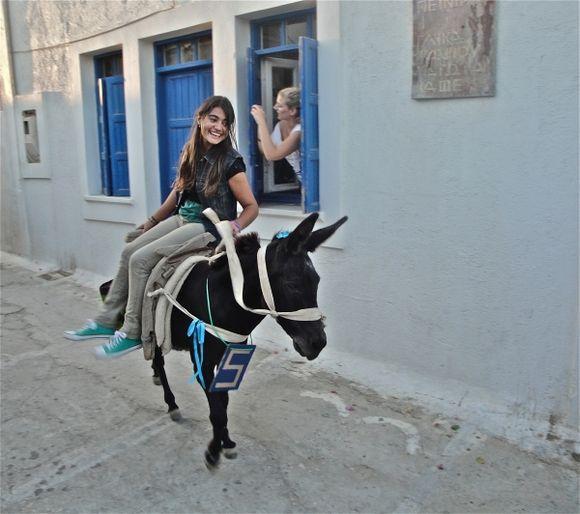 Donkeys run in Chora