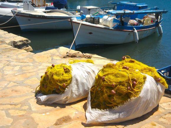 Yellow nets