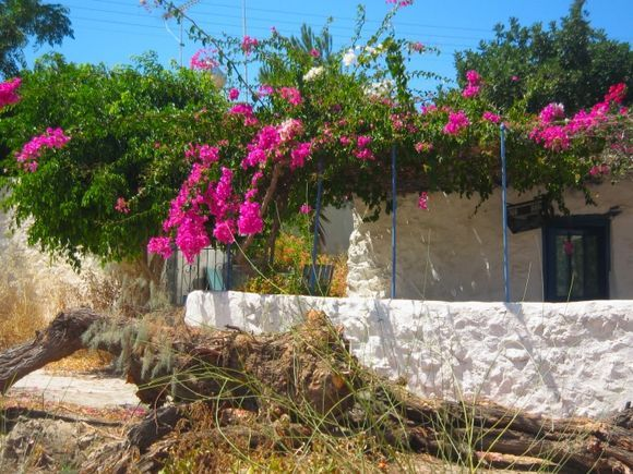 House in Arki island