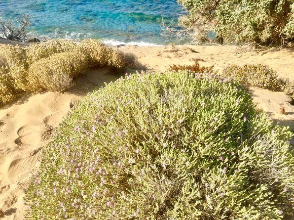 Exotic scenery in Gavdos Island