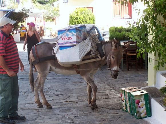 Loaded Donkey #3 in Ioulis