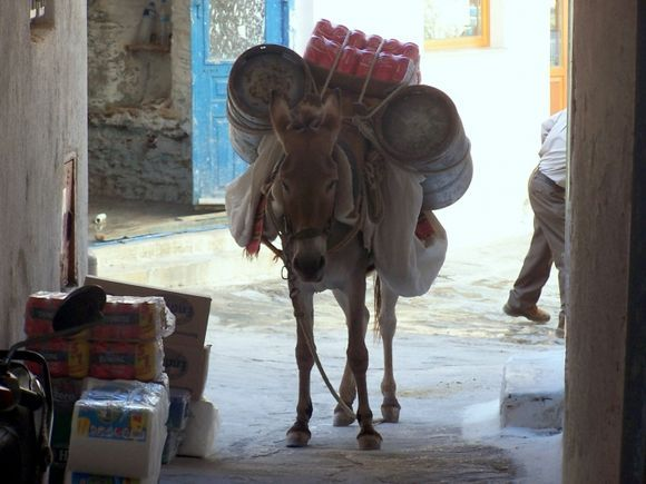 Loaded Donkey #1 in Ioulis