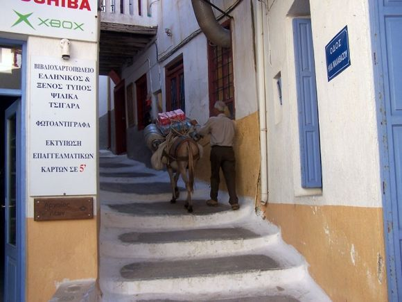 Loaded Donkey #2 in Ioulis