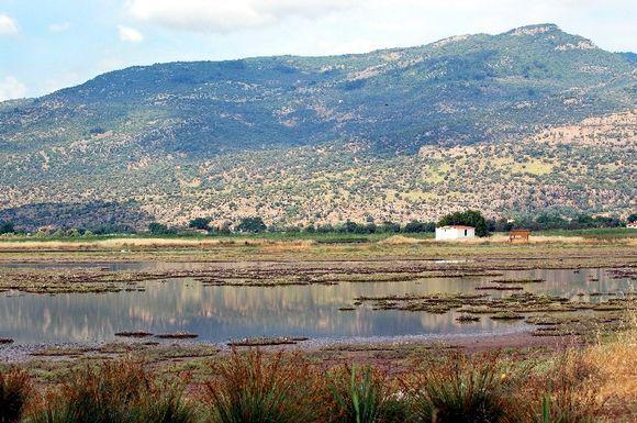 Wetlands to the west of Skala Kallonis