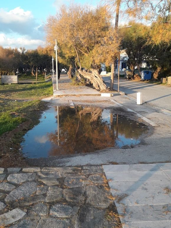 Late afternoon - after the rain - reflection.