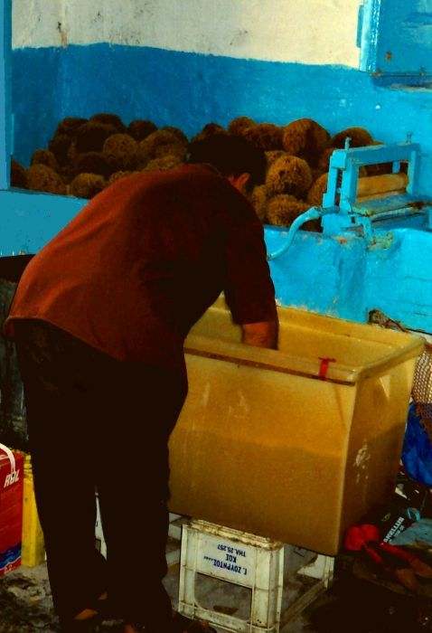 Sponge cleaninf procedure