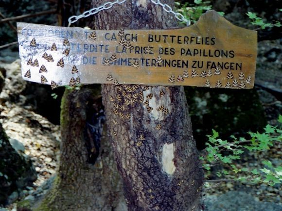Valley of the butterflies