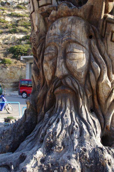 Tree at Matala.