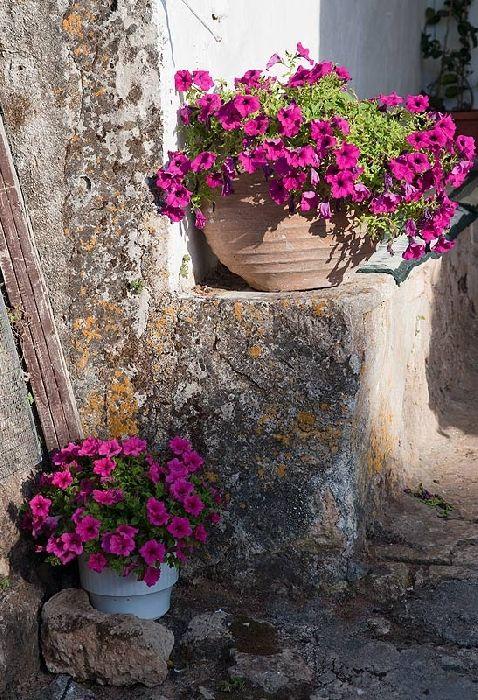 In Anafonitria Monastery