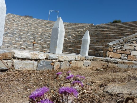 Flowers in the Amphitheatre