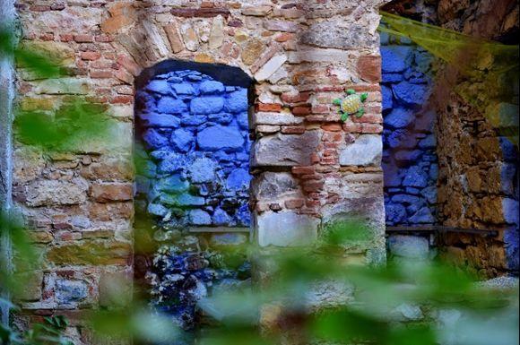 tartaruga on the wall ( Chios )