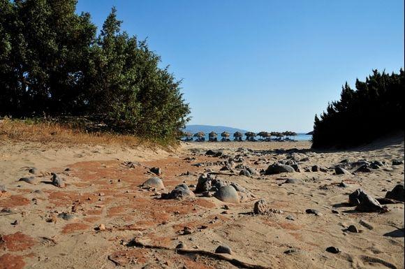 a stony path