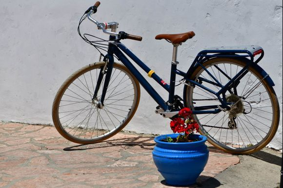 a flower for the bycicle