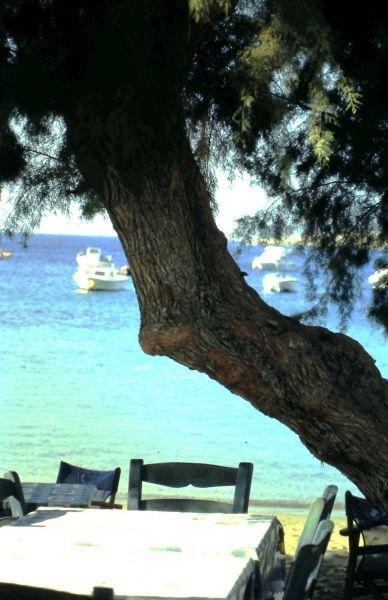 Sifnos, taberna on the beach
