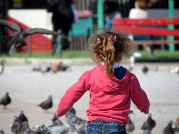 playing with pigeons...