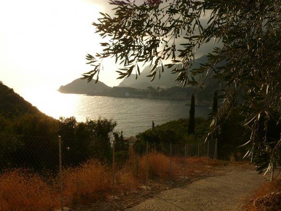 the path to Rovinia beach, through olive plantation,