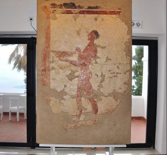 Santozeum Thera,wallpaintings from Akrotiri excavations
