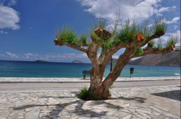 Pahia Ammos, Lassithi, Crete