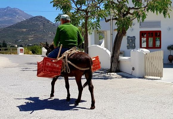 Man riding a donkey in a street of Galini