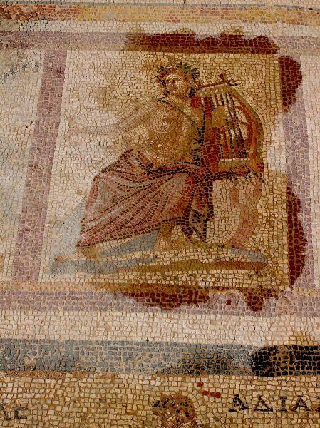 Water illuminates the mosaic